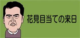 「上野のお山の花見」外国人に人気!私の国にはこういうお祭りない・・・