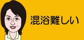 栃木・塩原温泉「混浴露天風呂」閉鎖!「風紀乱す入浴客絶えない」