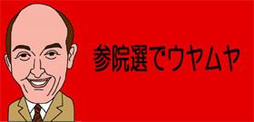 参院選でウヤムヤ