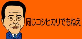 国産コシヒカリに中国産混入? JA京都の米卸が販売、検査結果真っ黒