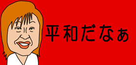 ブタ19頭遁走!阪神高速5時間半通行止め・・・眠りこんだり歩き回り