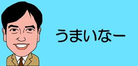 都議選自民惨敗の「THIS is 敗因」とは? 「豊田・萩生田・稲田・下村」4人組