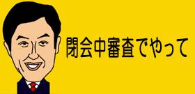 平愛梨さんの弟で都議に当選した平慶翔氏に疑惑! ウソをついてるのはどっち?