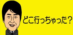 岡山の逃走ゾウガメに賞金50万円!不明から15日・・・エサ食べてるか?