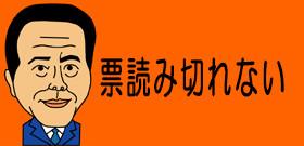 希望の党の『刺客』が明らかに 自民・荻生田幹事長代行には美人市議