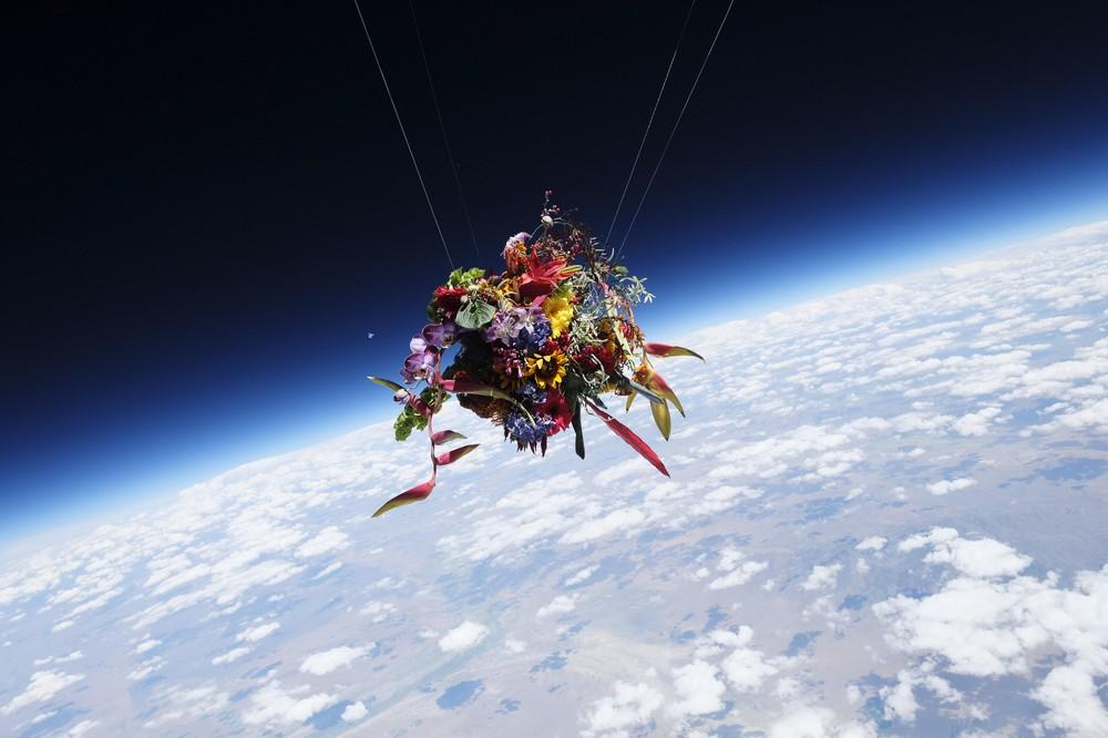 宇宙や深海に花を活ける・・・フラワー・アーティスト東信の世界を4K映像で堪能