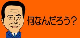 貴乃花『反論文書』理事会で配布!批判される筋合いない