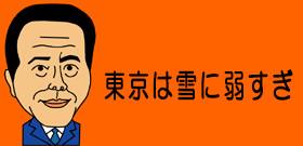 大雪襲来の前に早くも恐怖に震える大東京 「不要不急の外出は控えろ」と言われてもなあ...