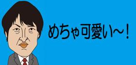 世界的な秋田犬ブームに便乗する中国の悪徳業者 ニセ秋田犬を摘発する番組も