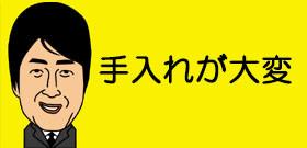 「世界で一番長い髪」日本の女子高生ギネス登録!生まれてから1度も切らず155・5センチ