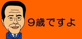 掛け声は「チョレイ」でなく「ヨーッ」!卓球・張本智和の妹も9歳で国際大会出場