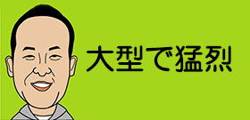 今年最強「台風22号」3連休は大丈夫か?沖縄、台湾方面の旅行は要注意