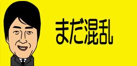 東京・豊洲市場けさ5時半「初めてのセリ」青森・三厩産マグロ428万円