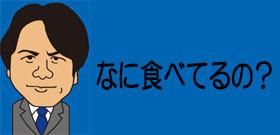 東京・杉並のミミズク 「大捜索」見下ろして悠然・・・カラスに突かれても微動だにせず