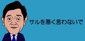 京都でサルに襲われる人が急増中 「可愛い~」と子ザルにさわると母ザルが激怒!