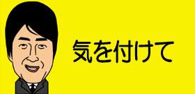 東京・恵比寿にミツバチ大群1万匹!ビルの間をブンブン・・・通行人「怖い」