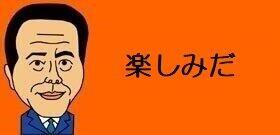 横浜に誕生するディズニー級の新テーマパーク 専門家が予想するのはハリウッドビッグ5のうちコレだ!