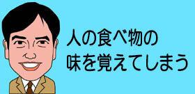 tv_20201020114614.jpg