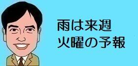 tv_20210226105518.jpg