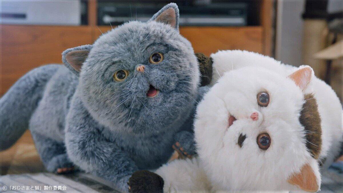 「おじさまと猫」ふくまるとマリン、姉弟のモフモフ対面にネット大号泣!「何とラブリーなお尻なんでしょ」「このドラマに出会えて幸せ」「原作で先を見たくなる自分と日々戦っています」